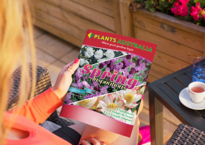 Plants Australia 16pg Spring Catalogue